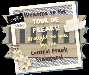 Freakwelcome2013-300x254