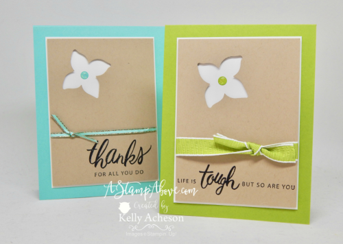 VIDEO TUTORIAL - Learn some great tips to make a rainbow of cards using this layout. Click the photo for all the details and links to order the products. www.AStampAbove.com
