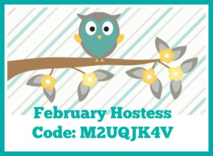 FEB host code new