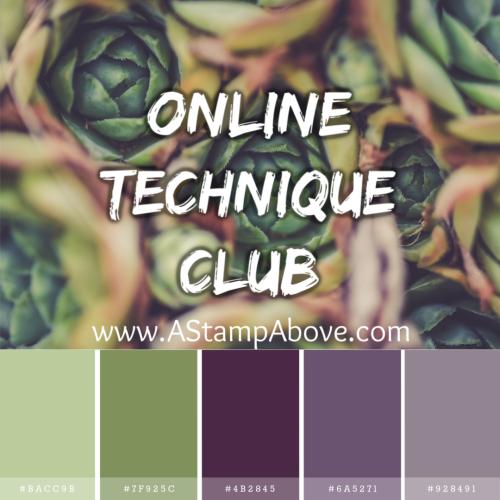 Online Technique Club