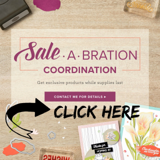 SAB COORDINATION BUTTON2