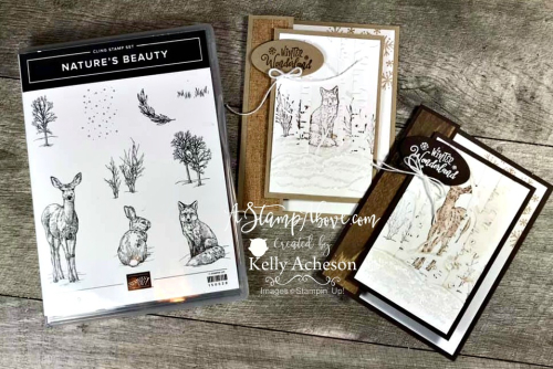 Facebook Live Replay VIDEO TUTORIAL - Click for details - ️SHOP ️ - ORDER STAMPIN' UP! PRODUCTS ON-LINE. Purchase the $99 Starter Kit & enjoy a 20% discount! Tons of paper crafting ideas & FREE Online Classes. www.AStampAbove.com
