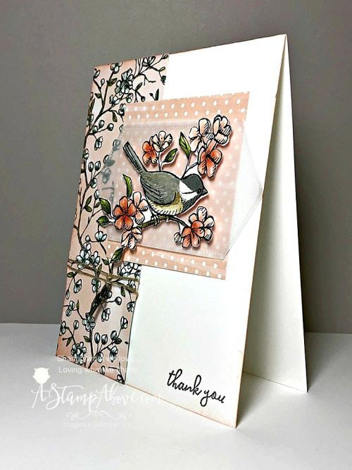 FREE DOWNLOAD - Click for details - ❤️SHOP❤️ - ORDER STAMPIN' UP! PRODUCTS ON-LINE. Purchase the $99 Starter Kit & enjoy a 20% discount! Tons of paper crafting ideas & FREE Online Classes. www.AStampAbove.com