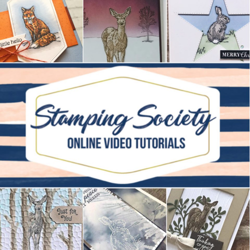 Get an exclusive video tutorial of 6 different cards for FREE with your order! $3 from the sale of each Nature's Beauty stamp set goes to charity!  VIDEO TUTORIAL - Click for details - ❤️SHOP❤️ - ORDER STAMPIN' UP! PRODUCTS ON-LINE. Purchase the $99 Starter Kit & enjoy a 20% discount! Tons of paper crafting ideas & FREE Online Classes. www.AStampAbove.com