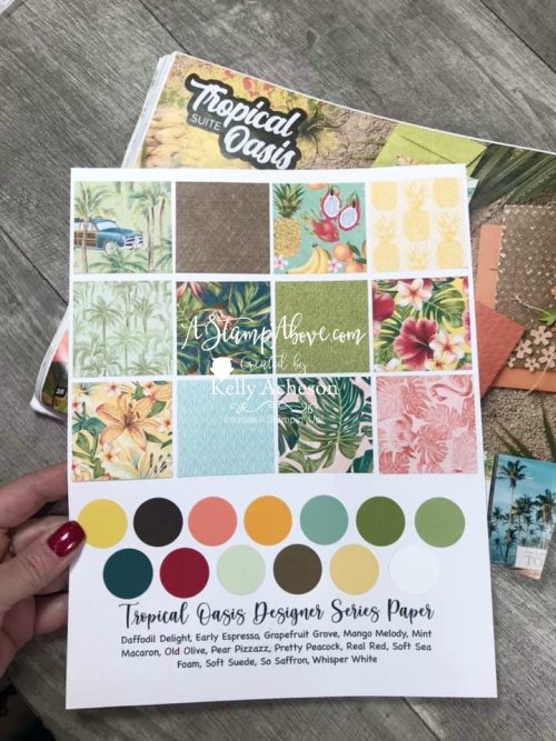 FREE DOWNLOAD - print off sampler sheets to keep with your Designer Series Paper so you can see it at a glance - VIDEO TUTORIAL - Click for details - ️SHOP ️ - ORDER STAMPIN' UP! PRODUCTS ON-LINE. Purchase the $99 Starter Kit & enjoy a 20% discount! Tons of paper crafting ideas & FREE Online Classes. www.AStampAbove.com