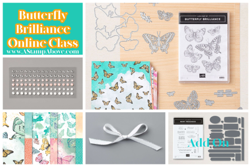 Butterfly Brilliance Graphic