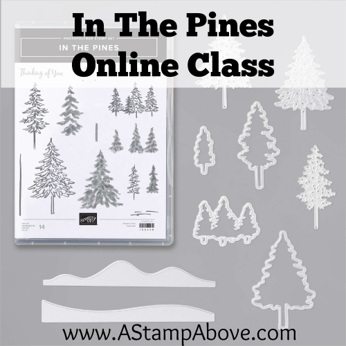 In The Pines Cover