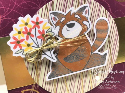 Learn all about the monthly PAPER PUMPKIN KIT!  Click for details! www.AStampAbove.com