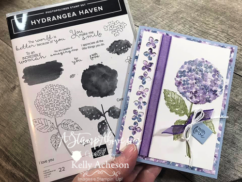 Learn how to make two cards with this beautiful Hydrangea Haven suite using the BABY WIPE TECHNIQUE - VIDEO TUTORIAL - www.AStampAbove.com