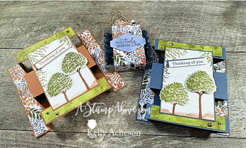 Try this fun fold - I used the BEAUTY OF FRIENDSHIP Suite -click for video - NEW from Stampin' Up! www.AStampAbove.com