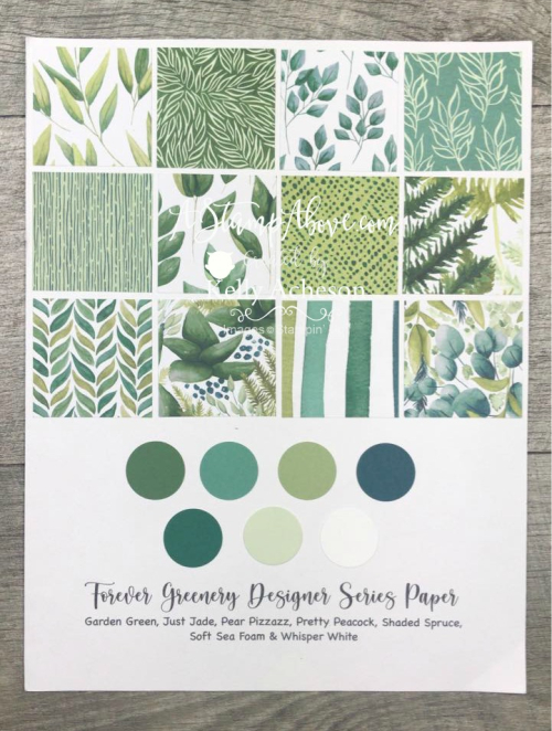 Learn how to make a gorgeous card using the STARBURST technique with the Forever Greenery DSP! VIDEO TUTORIAL - Click for details - ️SHOP ️ - ORDER STAMPIN' UP! PRODUCTS ON-LINE. Purchase the $99 Starter Kit & enjoy a 20% discount! Tons of paper crafting ideas & FREE Online Classes. www.AStampAbove.com