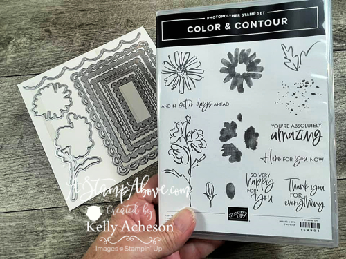 Watch the video tutorial for this amazing BABY WIPE technique using the new COLOR & CONTOUR stamp set! Click for details. www.AStampAbove.com