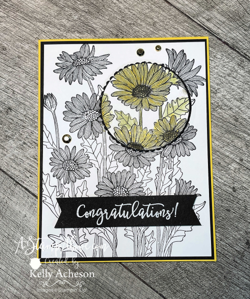 Learn how to make a SPOTLIGHT card with the Daisy Garden stamp by Stampin' Up! www.AStampAbove.com