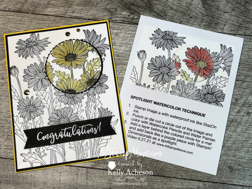 Check out my ONLINE TECHNIQUE CLUB and learn how to make a SPOTLIGHT card with the Daisy Garden stamp by Stampin' Up! www.AStampAbove.com