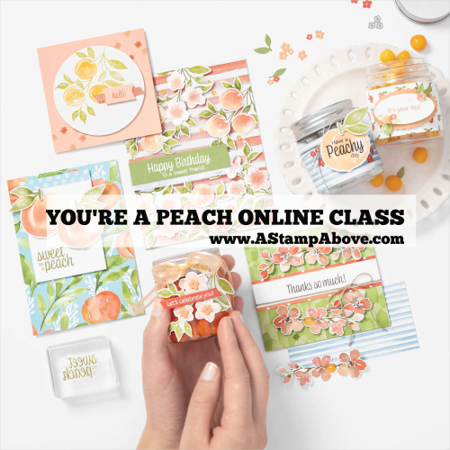 Learn all about my online class using the YOU'RE A PEACH SUITE from Stampin' Up! www.AStampAbove.com